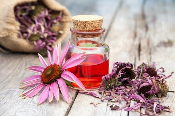 A bíbor kasvirág - Echinacea purpurea - kivonata az immunsejtek aktivitásának fokozásával segít legyőzni a vírust. Több ilyen jellegű termék is kapható - adagolás tekintetében a leírást tekintsd útmutatónak.