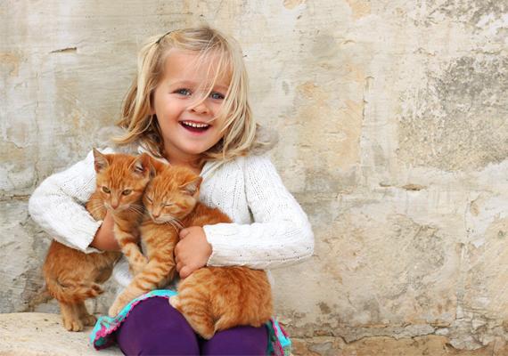 A kisgyerekek, talán mert aranyosnak látják őket, vagy belülről fakadóan, de nagyon szeretik az állatokat. Fontos, hogy ezt az állatszeretetet megerősítsd gyermekedben, és amennyiben van rá mód, egy saját kedvenc nevelgetését bízd rá, ha már elég idős hozzá. Ezzel az állatok iránti szeretet mellett felelősségtudatra is neveled őt.