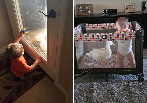 Ha Tyler felébred, Bee odamegy hozzá, és szórakoztatja, amíg a szülők nem jönnek, és veszik fel.