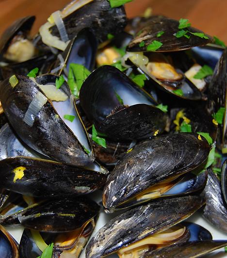 KagylóA kagylófélék és a tenger gyümölcsei gyakran nyersen fogyasztva a legfinomabbak. Várandósságod kilenc hónapja alatt azonban le kell mondanod ezekről az ízletes csemegékről, ugyanis veszélyeztethetik a baba egészségét.