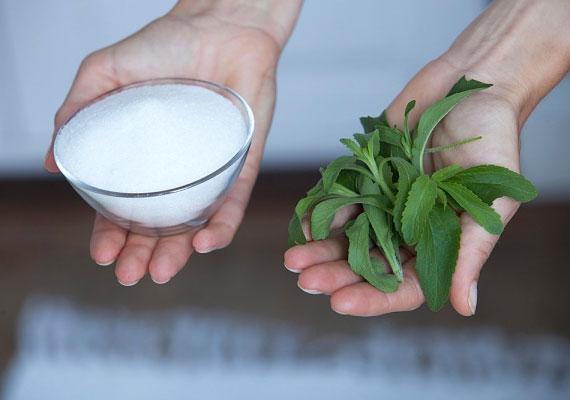 A cukorpótlóként alkalmazott sztívia eredménye alacsony vérnyomás lehet.