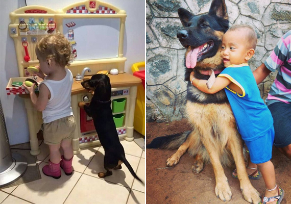 - Mi készül, gazdi? - kérdezheti a kis totyogóst a tacskó kutya. A másik fotó pedig vitathatatlan, hogy magáért beszél.