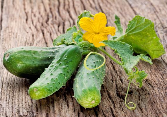 Az uborka 96%-ban vízből áll, pontosan ezért olyan nagy segítség, ha a nedvességét vesztett, napégette bőr hidratálásáról van szó. Egyszerűen karikázz fel egy kisebb adagot a zöldségből, majd fektesd az irritált felülre 10-20 perce.