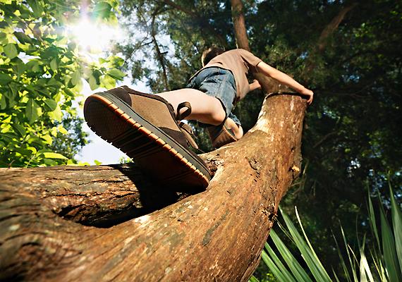 A fára mászás a kedvelt nyári tevékenységek egyike - és az egyik leggyakoribb oka a baleseteknek. Győződj meg róla, hogy a fa ágai elég erősek, és ekkor se engedd túl magasra csemetédet.