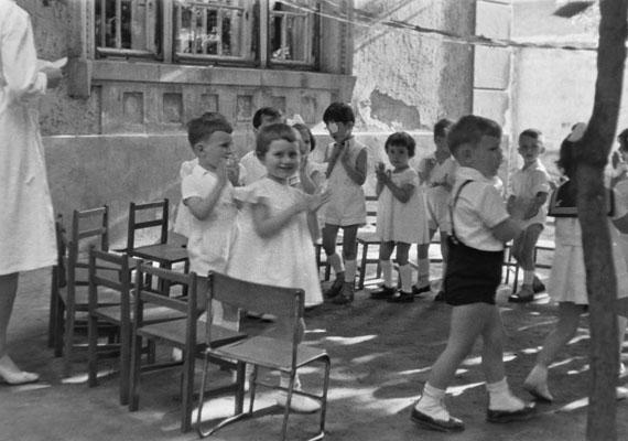 Ovisok tapsikolnak az udvaron.                         Kép: Németh Tamás, 1960