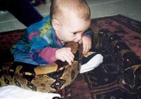 Ez a szülő ahelyett, hogy beavatkozott volna, és megmentette volna az életveszélytől a babát, inkább fotózott. Hogy kerülhet egy lakásba egy ilyen állat és egy kisbaba?