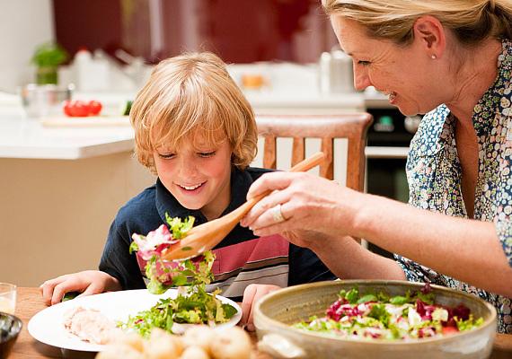 A megfelelő tápanyagok a testi, szellemi fejlődés szempontjából is nagyon fontosak. A vitaminokban gazdag, változatos és kiegyensúlyozott táplálkozás nagymértékben javítja és gyorsítja a gyerek felfogóképességét.