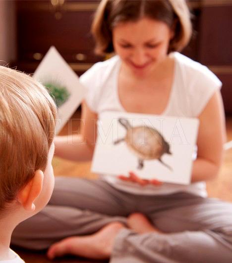 Tanulókártyák                         A vizualitás nagyon nagy szerepet játszik a tanulásban. Egészen más például egy teknősbékáról olvasni, hogy hol él és mivel táplálkozik, mint ugyanerről képeket nézegetve beszélgetni. Mindenféle témában, elsősöknek valótól a felső tagozatig kaphatóak kártyák, amelyek nemcsak illusztrálják, de fel is dobják a tanulást.