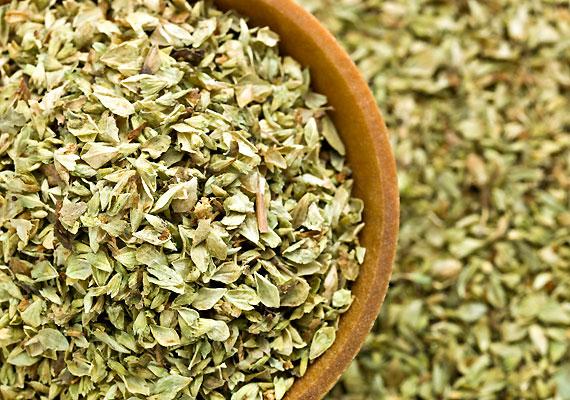 Ugyanez a helyzet egy másik népszerű zöldfűszerrel, az oregánóval is.