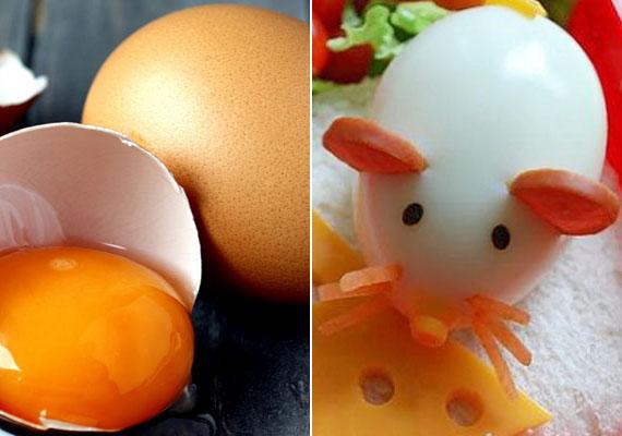 TojásEgy tojássárgájában körülbelül 1,5 milligramm vas van, de lecitin-, fehérje-, B-vitamin- és cinktartalma sem elhanyagolható. Készíts némi felvágott és répa segítségével cuki tojásegérkét a gyereknek, így, mivel hatsz fantáziájára, vonzóbbá teheted a számára a fogyasztását.