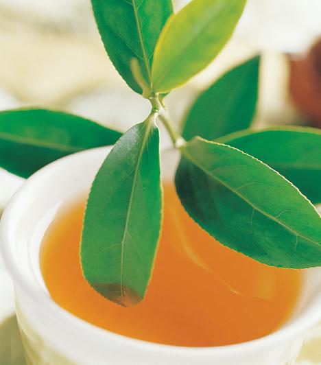 Gyógyteák  Rengetegféle gyógytea kapható, mindenféle betegségre, tünetre lehetne találni valamilyent. Ám ezek a teák nem mindig kicsiknek valók, mert egyesek - például a bodza - hányást, hasmenést okozhatnak, mások - például a menta - fulladásos reakciót válthatnak ki. A teák azonban nemcsak belülről, külsőleg is bajt csinálhatnak. Ha kamillával mosogatják a kötőhártya-gyulladásos szemet, bőrirritáció léphet fel.