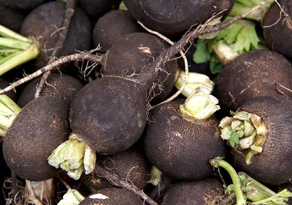 Márciusban még mindig az egyik legjobb választás, ha friss zöldségre vágytok, a fekete retek, amely valóságos C-vitamin-bomba, baktériumölő és légúttisztító hatású is.