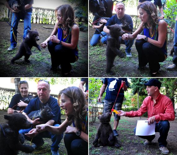 Demcsák Zsuzsa egy tündéri kis mackót etetett a veresegyházi Medveotthonban, csakúgy, mint kollégája, Vujity Tvrtko.