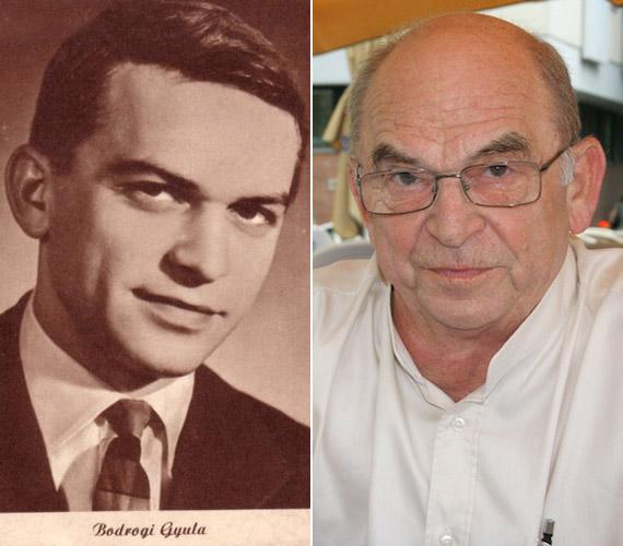 Bodrogi Gyula pályáját néptáncosként kezdte. Kevesen tudják, hogy mielőtt színésznek állt, 1954-ig a SZOT együttes jóképű szólótáncosa volt.