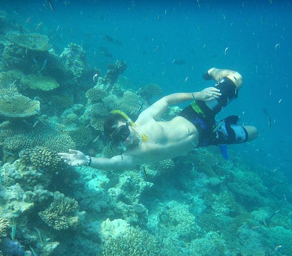 Szereti az extrém sportokat, a búvárkodást is kipróbálta, volt, hogy teknősökkel úszkált együtt.