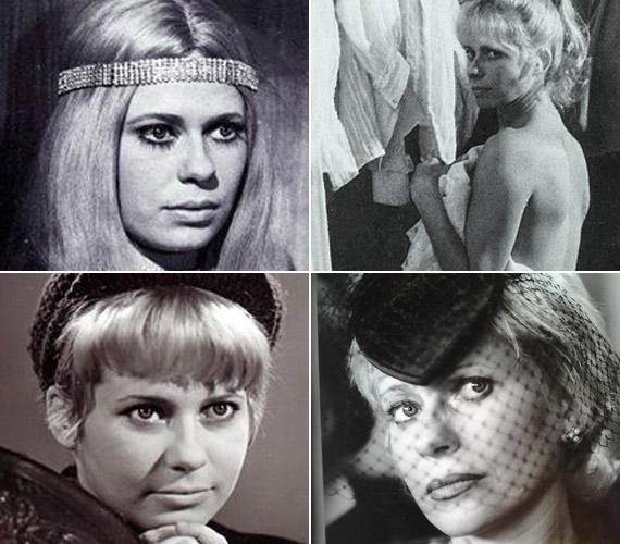 1968-ban diplomázott a Színház- és Filmművészeti Főiskolán. A hatvanas-hetvenes években gyakran szerepelt a filmvásznon, játszott például az Álmodozások kora, a Régi idők focija vagy a Kojak Budapesten című filmekben. A kilencvenes években a Família Kft. című sorozat tette még híresebbé.