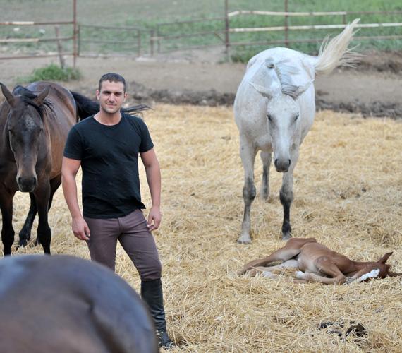 Kucsora Bence egész családja állattartással, mezőgazdasággal foglalkozik, amibe már kisgyerekként bekapcsolódott. Ha kipróbált más munkákat is, soha nem gondolkodott azon, hogy mást csináljon.
