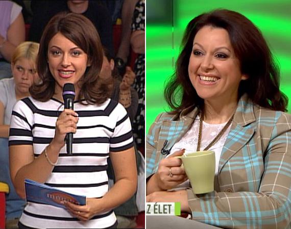 Erdélyi Mónika 32 éves volt, amikor 1999-ben a TV2-höz került, ahol hírszerkesztőként dolgozott. Két év múlva viszont már az RTL Klubon indult el délutáni beszélgetős műsora, a Mónika Show, ahol az átlagemberek problémái kerültek előtérbe. Bár utóbb kiderült, hogy a műsor többnyire bérszereplőkkel dolgozott, óriási siker volt, a felejthetetlen epizódok, vicces beszólások és verekedések azóta is elérhetőek a videós megosztókon. 2010-ben ért véget a show, Mónika egy ideig a Reggeli műsorát vezette. Aztán felröppent, hogy Joshi Bharattal közösen visznek egy beszélgetős műsort a Fem3-on, de végül csak Joshi kellett. Bár mint Mónika bevallotta, hiányzik neki a tévézés, azért nem unatkozik: külkerdiplomája mellé letette a cukrászvizsgát, és megszerezte harmadik végzettségét is mint párkapcsolati tanácsadó.