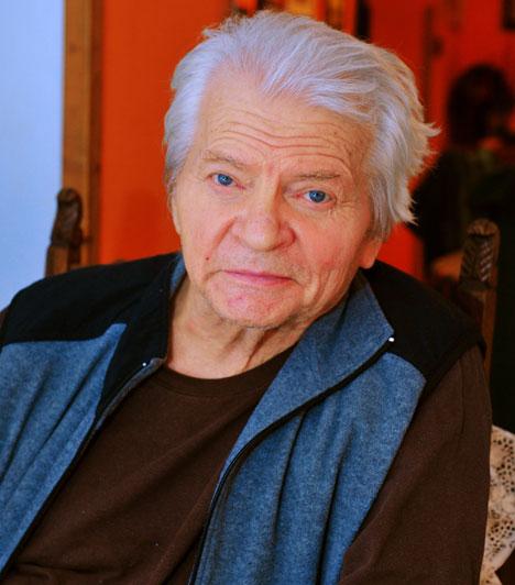 Szabó Gyula (1930-2014)  A nemzet színésze hosszú betegség után, 2014. április 4-én hunyt el. Columbo, vagyis Peter Falk magyar hangja volt, az ő orgánumán szólalt meg a Dallasban Clayton Farlow, továbbá számos rajzfilmfigura, így dr. Bubó, Frakk és a Pumukliban Éder mester is. Mesemondása is legendás, többek között a Magyar népmesék című rajzfilmsorozat narrátoraként is sokak számára felejthetetlen a hangja.