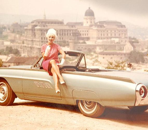 Az 1968-as A veréb is madár című filmnek csak az utolsó harmadában jelent meg a színen. Azért írták bele, hogy megkaphassák a képen szereplő Ford Thunderbird kocsiját.