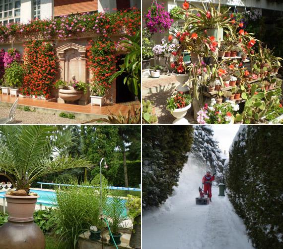 Egy gyönyörű budai villában él, ami sok munkát is ad a kortalan dívának, de ő nem retten meg sem a kerti munkától, sem a téli hóeltakarítástól.