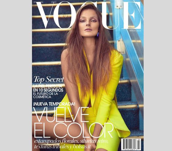 A szakértők szerint Koray Birand remek munkát végzett a mexikói Vogue-nak, amikor a magyar modellt számos színes összeállításban fotózta.