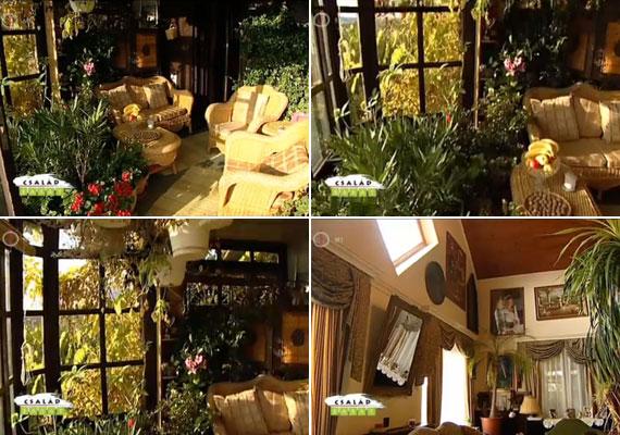A déli fekvésű házban mindenhol becsillan a napfény, ezért a növények remekül érzik magukat minden helyiségben.