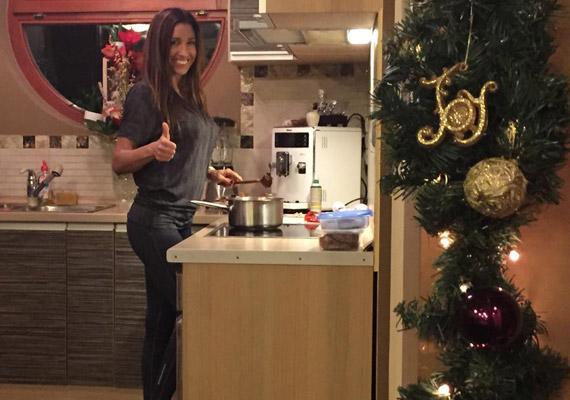Már most karácsonyi díszben pompázik a Schobert házaspár otthona - további képekért kattints ide »