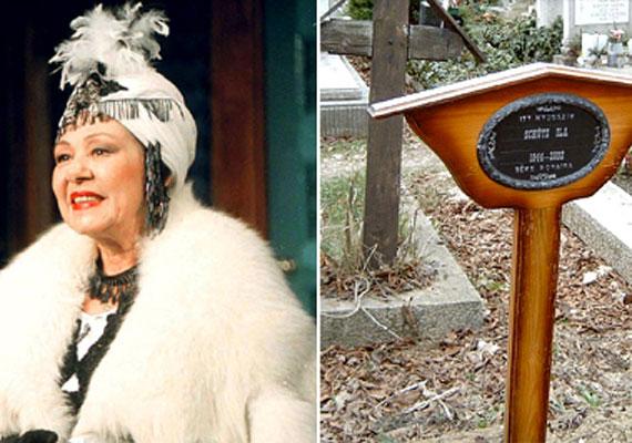 A Jászai Mari-díjas színésznő háromszor volt férjnél, első házastársa Halász Mihály operatőr, második Dégi István színész, akitől egy fia született, harmadik pedig dr. Török Tamás. Utolsó éveiben depresszióval küzdött, 2002-ben, 58 évesen vetett véget életének.