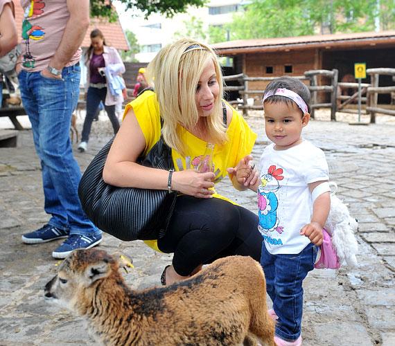 Gombos Edina a hároméves Mirandával a Vidámpark után az Állatkert állatsimogatójához is ellátogattak.