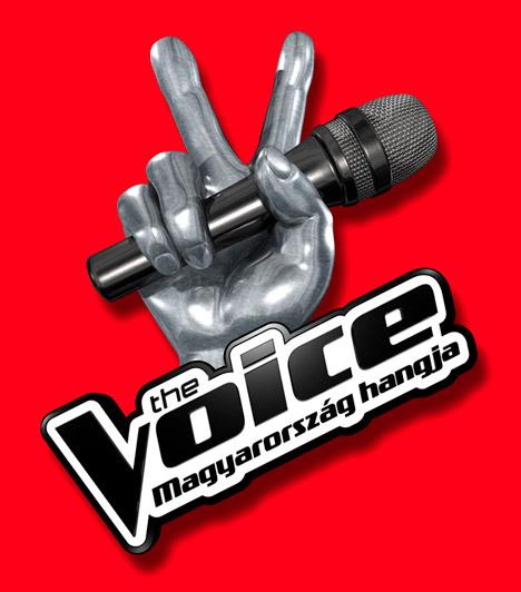 The Voice  Bizonyára kevesen tudják, hogy a The Voice című tehetségkutató Hollandiából indult világhódító útjára még 2010-ben. A show-műsor azóta hatalmas sikereket ért el a tengerentúlon, 2012-ben pedig Magyarországra is megérkezett, a TV2 tűzte műsorára.  Kapcsolódó cikk: A magyar tehetségkutatók felfedezettjei »
