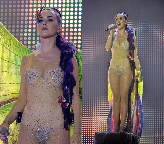Az intim testrészeit több strassz takarta, mint a ruha többi részét, ő csak fehérneművel vállalta be az öltözetet.