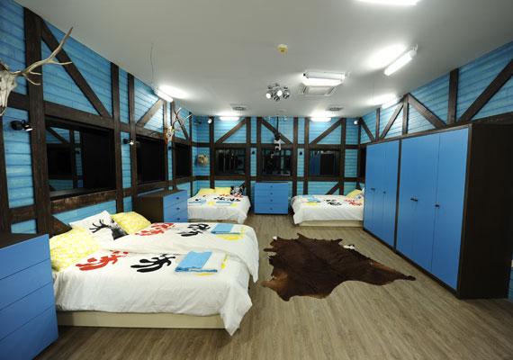 A közös hálószobában a kék szín az uralkodó. A természetet itt falra függesztett trófeák és a padlóra leterített állatbőrök képviselik.