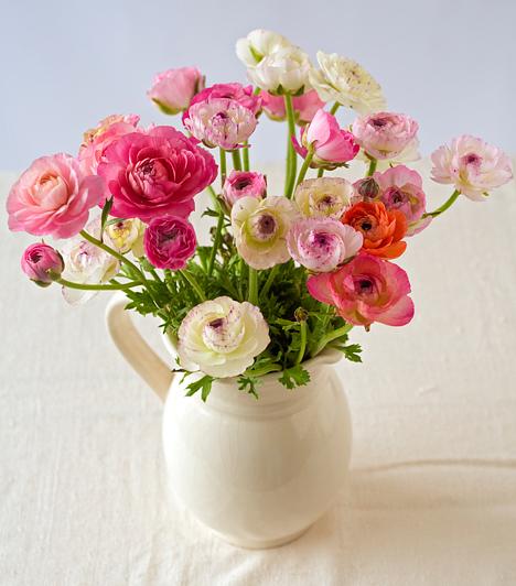 Finom elegancia  A rózsa a maga finomsága miatt az egyik legközkedveltebb virág, de még nála is bájosabb talán a boglárka, ami tucatnyi szirmával már egymagában is elragadó. Hát még akkor, ha szivárványszínű csokorba fogod az egészet, majd egy egyszerű fehér vázába beleállítod.
