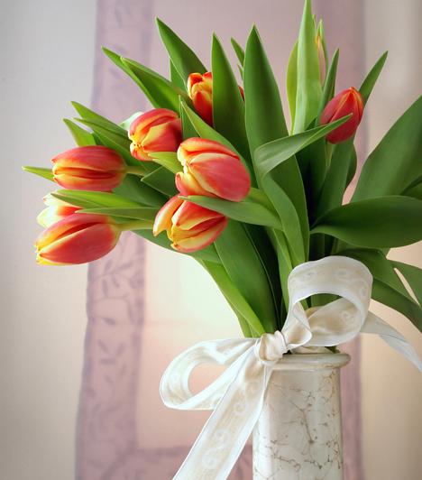 Egyszerű tulipáncsokor  A sárgából pirosba váltó tulipán az egyik leggyakoribb tavaszi virágfajta. Azonban egyedivé teheted, ha egy halvány színű szaténszalaggal csokorba kötöd, és így állítod egy vékony csővázába.