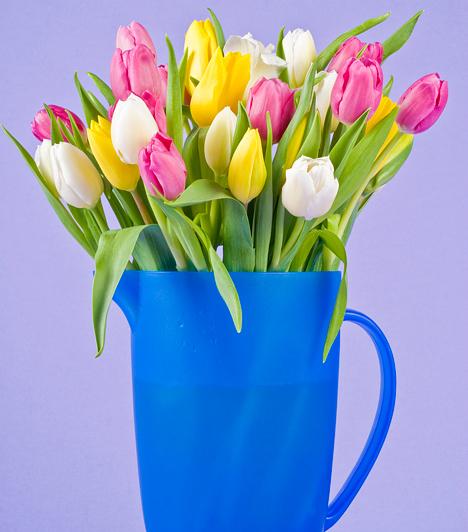Ezerszínű pompa  A tulipán ezernyi színárnyalata a tavaszi vidámságot és életkedvet sugározza. Ha ezeket a feltűnő színeket egy csokorba kötöd, majd beleállítod egy egyszerű, szintén élénk színű műanyag kancsóba, pillanatok alatt meseszép dekorációt kapsz.