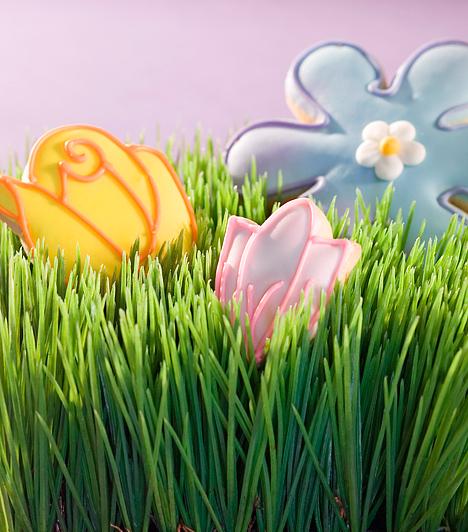 Kertecske meglepetésekkelHa nincs kerted, tölts meg egy muskátlitartó ládát földdel, és vesd be fűmaggal. A zsenge, dús fűbe aztán elrejthetsz néhány csokitojást vagy cukormázzal vastagon bevont, színes mézeskalácsot is. Dekoratív dísz lehet az ablakban, illetve izgalmas célpont a gyerekeknek.