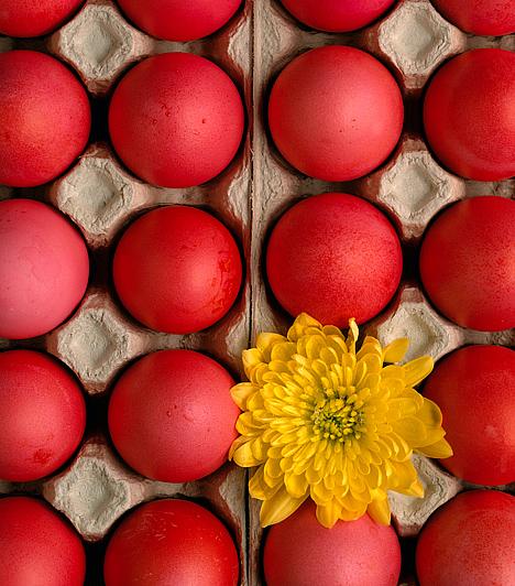 Piros tojásA tojások festéséhez a leggyakrabban a piros színt használták, melynek mágikus, védelmező erőt tulajdonítottak. Egyes feltevések szerint a piros ugyanakkor Jézus vérét jelképezi.