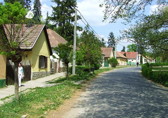 A Duna és a Börzsöny találkozásánál fekszik Zebegény, amely békebeli hangulatával és csodás panorámájával elvarázsolja az ide érkezőket. Az aprócska falu remek rálátást ad a Dunára, a közeli kilátó pedig az egész Dunakanyarra. Tipikusan olyan faluról van szó, amely hosszú, romantikus sétára készteti az embert.