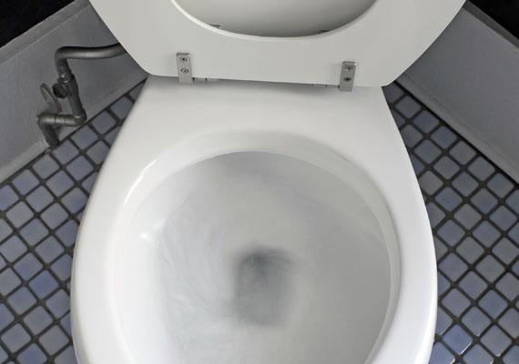 A lista elejéhez közeledve egyre inkább a fürdőszoba veszi át az uralmat, kezdve a felhajtva hagyott WC-ülőkével.