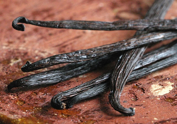 A valódi vanília erőteljes aromája nemcsak az ízlelőbimbókra van hatással.