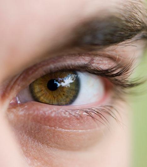 Szem  A szem nemcsak a vizuális ingerek kulcsszerepe miatt kap jelentőséget az érzékiségben. A szemöldök alatti rész és a szemhéj finom finom bőre különösen fogékony az apró csókok kényeztetésére.