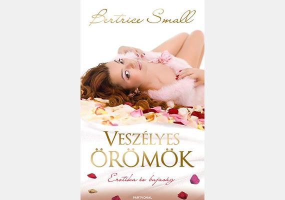 Bertrice Small Veszélyes örömök című könyve Annie Miller, az ötgyermekes özvegyasszony életéről szól. A nő szeretne elszakadni a hétköznapoktól, ezért a húga titokban benevezi egy versenyre, amelyet egy, a nők érzéki fantáziáját kiszolgáló tévéadó szponzorál. Annie megnyeri a fődíjat, az egy hétig tartó, kellemes pihenést a csatorna előfizetőinek fenntartott exkluzív fürdőben.