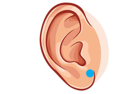 A férfiak kifejezetten kedvelik, ha a fülüket izgatják. Helyezd a hüvelyk- és mutatóujjadat párod fülcimpájára, oda, ahol a fül és az arc találkozik. Majd végezz óvatos, húzogató mozdulatokat, miközben lassan hagyod kicsúszni az ujjaid közül. Ismételd meg néhányszor a mozdulatot.