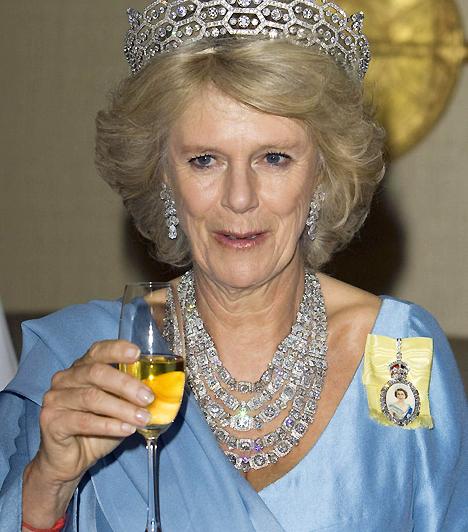 Camilla Parker Bowles  Camilla az élő bizonyíték rá, hogy az uralkodóknak nem csak a múltban voltak szerelmi afférjai. Károly herceg házassága előtt és azalatt is intim viszonyt ápolt a hölggyel, ám viszonyukat mindvégig meglehetősen diszkréten kezelték, míg Diana hercegnő halála után, 2005-ben Károly feleségül vette, a királynő pedig hercegnéi rangra emelte.