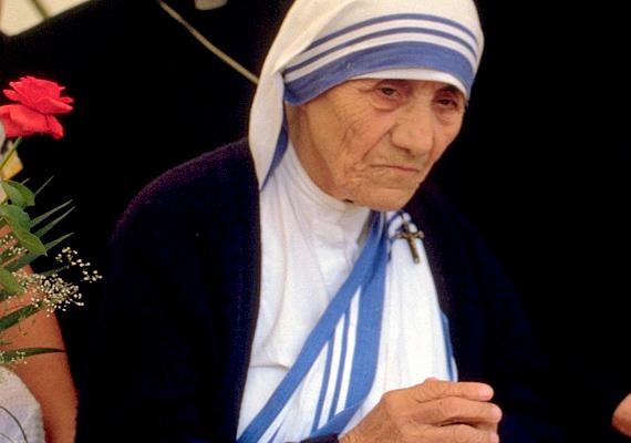 Teréz anya, vagyis Kalkuttai Boldog Teréz jósága miatt lehet a példaképed. A római katolikus apáca megalapította a Szeretet Misszionáriusai szerzetesrendet, Nobel-békedíjat kapott, és sokat tett a kalkuttai szegényekért.