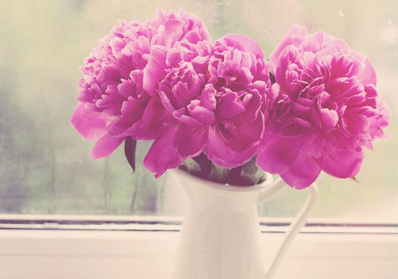 """""""A szépség nem az arcodon van. A mosolyodban. A szívedben. Valójában az tartja melletted a másikat, ugyanis a külsőségek csak ideiglenesen elégíthetnek ki, míg a tiszta szeretet akár egy életen át elég lehet.""""                         Oravecz Nóra"""