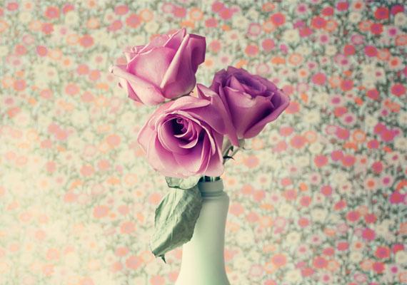 """""""Ha nő vagy, ne feledd: egy igazi varázslónak születtél, teremtő tündérnek. Ha valamit szeretnél, el fogod érni, meg fogod érinteni. Az érzelmeid segítenek megtalálni és megtartani bármit: szerelmet, munkát, célokat. Elegendő vagy te magad, a lelked és a szíved.""""                         Belső Nóra"""