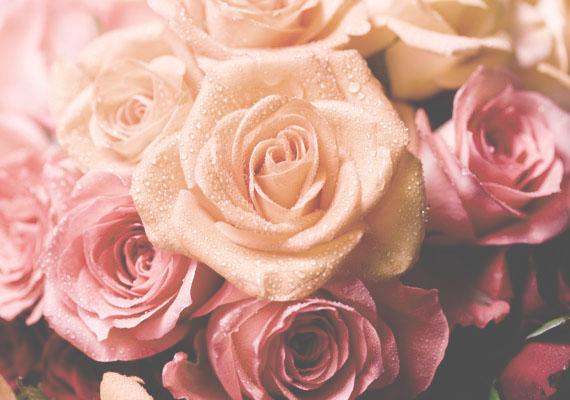 """""""Sokszor úgy tűnik, nem nő vagy, hanem a fény, amely a virágra vetül.""""                         Virginia Woolf"""