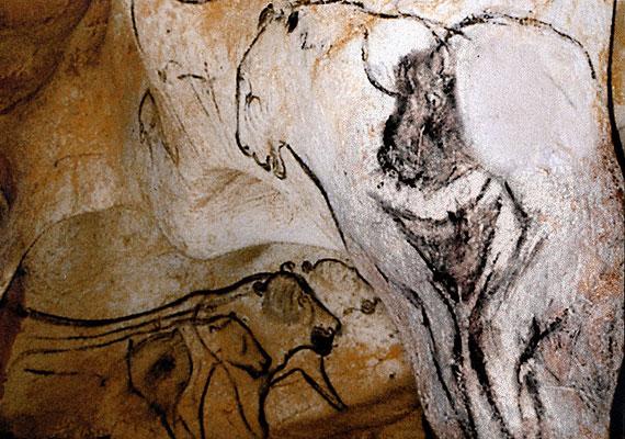 A franciaországi Chauvet-barlang szintén gazdag lelőhely. A Chauvet-Vénusznak nevezett ábra egy cseppkő formáját követi, és női szeméremdomb ábrázolásának tartják.